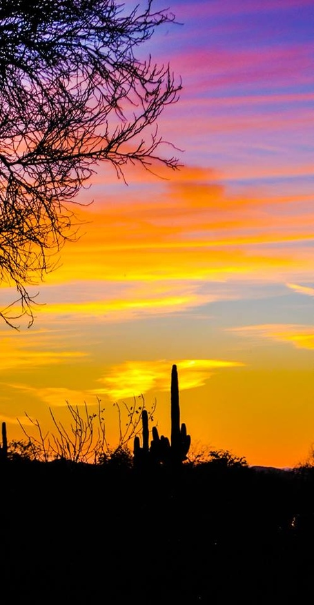 Sunset_in_arizona_medium
