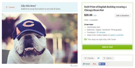English_bulldog_hat_picture_medium