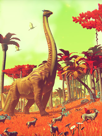 Nms336