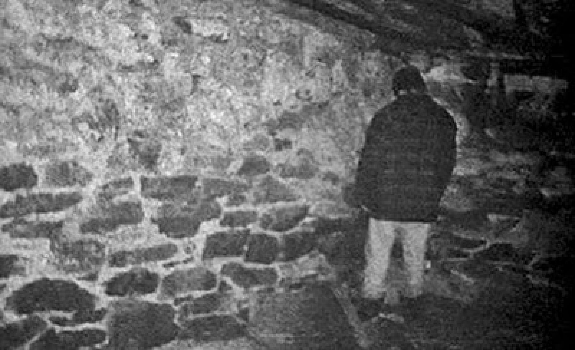 is the blair witch project a true story Photo credit: alliance shocking (but true) facts about 'the blair witch project' all the crazy stories you've heard are trueand then some.