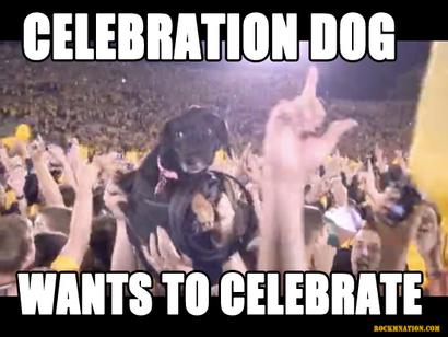 Celebration_dog