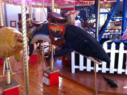Sharks-carousel