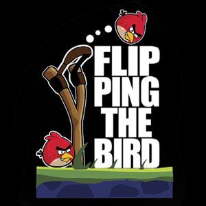 E825_angry_birds_flip