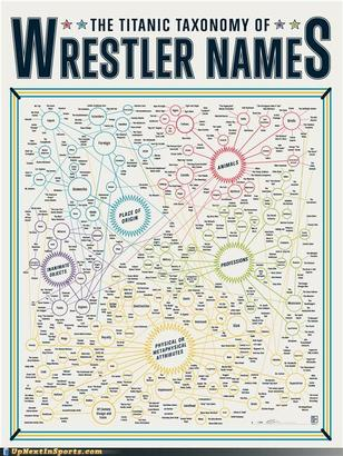 Funny-sports-pictures-wrestling-names-a-case-study-names-infographic-learning