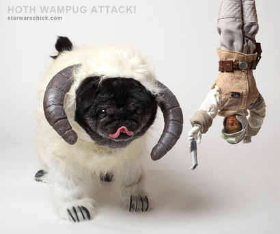 Wampug-attack_small
