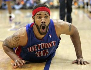 Rasheed-wallace-profile