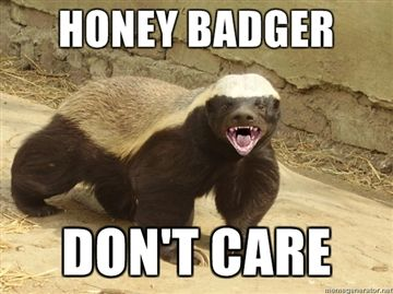 Honey-badger-dont-care