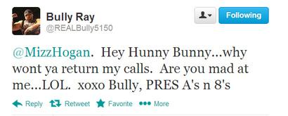 Bully_tweet