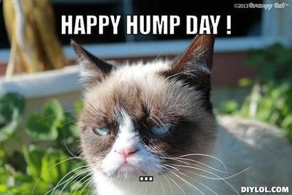 Grumpy-meme-generator-happy-hump-day-dd62bc