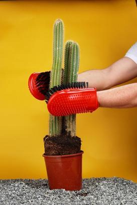 Gloves3cm