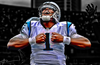 Camnewton_small