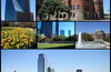 Dallas_montage_2014_small