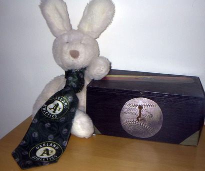 Rabbitball1