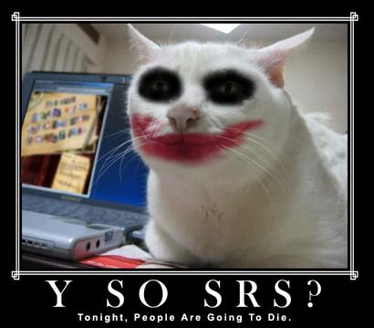 Serious-cat-joker