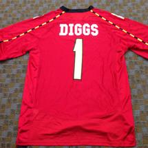 Diggs
