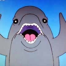 Funny_dolphin
