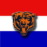 Bears_avatar