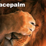 Lion_s_facepalm
