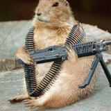 Funny-pictures-chippy-the-attack-gopher-1hv