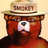 Smokey-the-bear