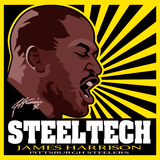 Avatar_steelers2