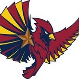 Arizona_phoenix_bird