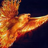 Phoenix-3