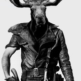The_moose