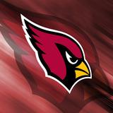 Arizona_cardinals-787