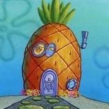 Spongehause