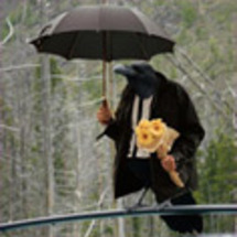 Funeral-bird-120_ico