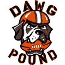 Cleveland-browns-alternate-logo-3-primary