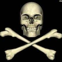Skull___x_bones