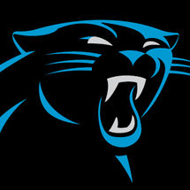 New_panthers_logo_2