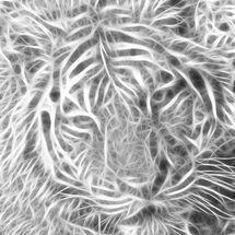 Fractal_tiger