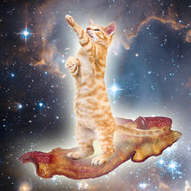 Bacon-space-kitty-22180-1278510824-21