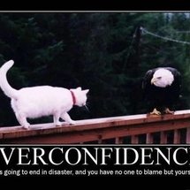 Over-confidence-cat-eagle-demotivational-poster
