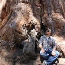 Yosemite_profile_pic