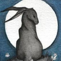 Moon_hare