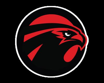 Falcons logo png - photo#9