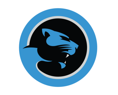 Carolina Panthers Cat Scratch Reader