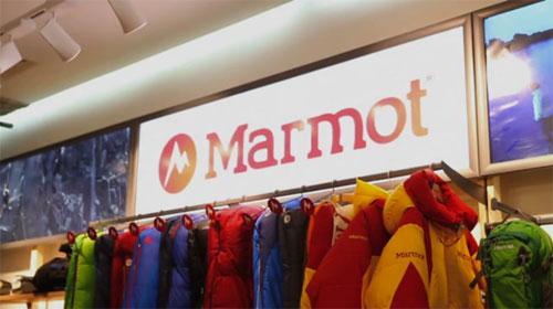 Marmot-Chicago.jpg