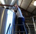 brew150.jpg