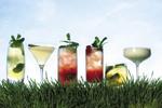 Cocktail-Week.jpg