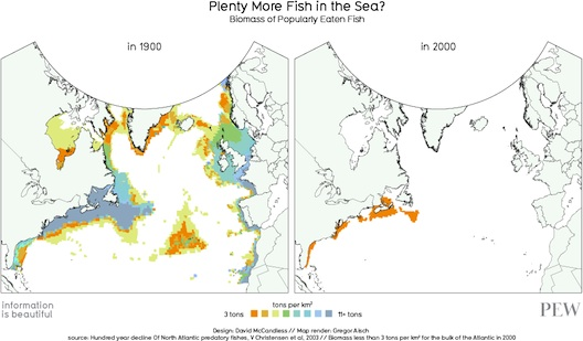 fish-populations.jpg