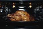 roast-chicken-sex-ruhlman-150.jpg