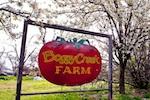 boggy-creek-farm-150.jpg
