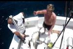 ramsay-shark-fishing.jpg