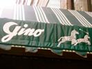 2010-12_gino1.jpg