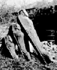 coffins_zps57bb3f01.0.jpg